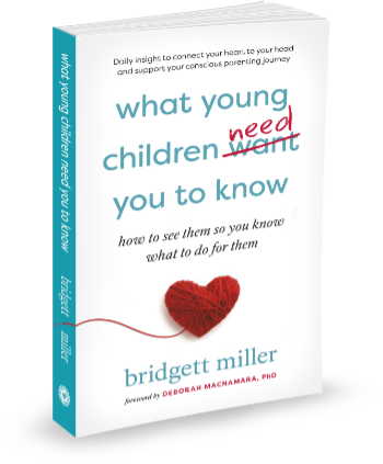Bridgett Miller book cover