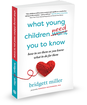 Bridgett Miller book cover